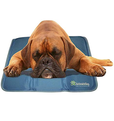 TheGreenPetShop Dog Cooling Mat - Patented Pressure-Activated Gel Cooling Pad for Dogs & Pets - Dog Accessories to Help Your Pet Stay Cool This Summer - Avoid Overheating, Ideal for Home & Travel