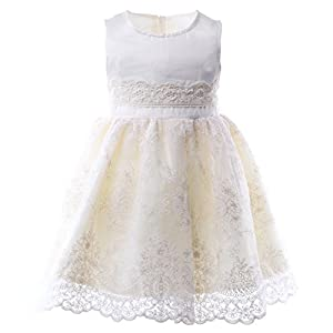 ANATA Girls Dress Kids Party Dresses Lace Tulle Sleeveless Wedding Pageant Dresses Toddler Gowns 6-7 Years