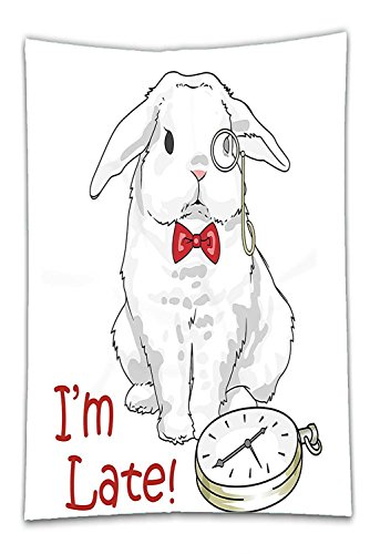 Alice In Wonderland Characters White Rabbit Costume (Nalahome Fleece Throw Blanket Alice in Wonderland Decorations Collection Funny Rabbit with Watches Disney Cartoon Alice Decor Character Fantasy White Red)