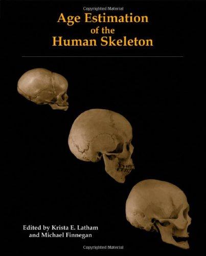 Age Estimation of the Human Skeleton