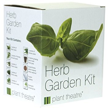 Best Herbs Plants