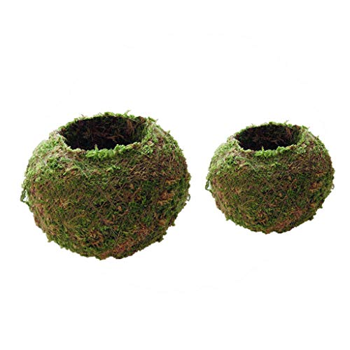 Set of 2pcs 6cm 12cm Green Moss Ball Flower Pot Planter Bonsai Plant Decor
