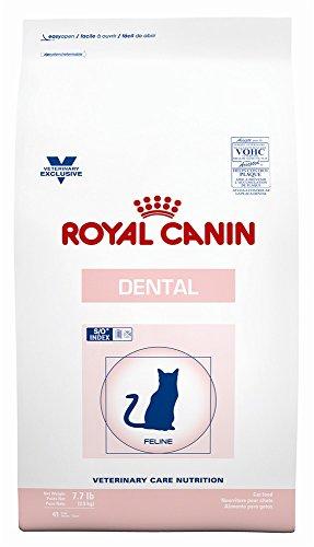 ROYAL CANIN Feline Dental Dry