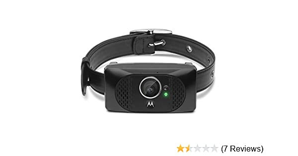 Amazon com: Motorola SCOUT5000 Wearable HD Pet Camera with GPS