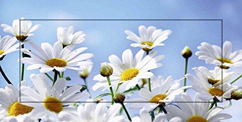 Artland Modell-Rahmen Wand-Bild gerahmt mit Motiv Monia Blumen - Margeriten Botanik Blumen Margerite Fotografie Weiß 51,4 x 101,4 x 1,6 cm A6MU