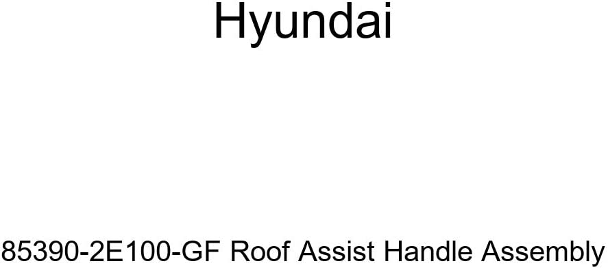 Genuine Hyundai 85390-2E100-GF Roof Assist Handle Assembly