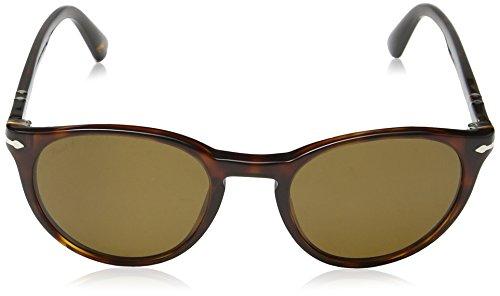Men's Persol Po3152s Brown Polar Havana Sunglasses gO6wadq