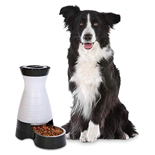PetSafe Healthy Pet Gravity