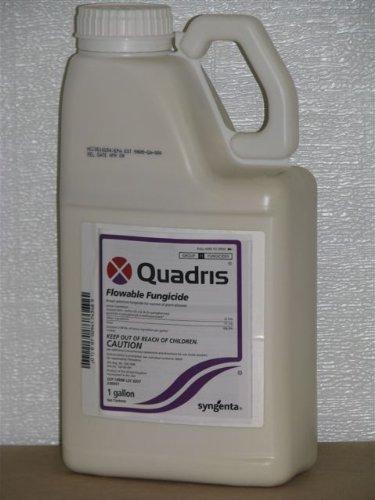 Quadris Fungicide 1 Gallon