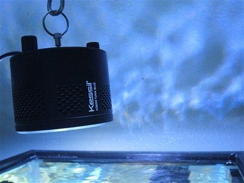 Kessil a360ne narrow angle dimmable aquarium controller for Aquarium angle