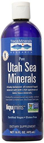 Trace Minerals Utah Sea 16 Ounce