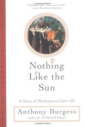 Nothing Like the Sun (Norton Paperback Fiction)