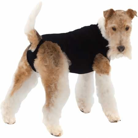 (Suitical Recovery Suit for Dogs - Black - Size Medium)
