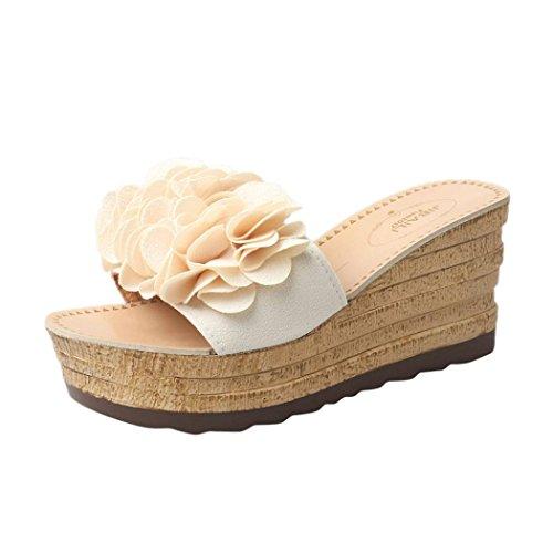 HLHN Women Slipper,Sexy Flower Wedge Heel Sandals Platform Shoes Slope Flops Beach Summer Beige B