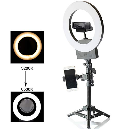 10 Selfie Ring Light 3200K-6500K for Webcam YouTube Video and Makeup,Dimmable LED Camera Light with Adjustable Tripod Stand,Mirror Cell Phone Holder Desktop LED Lamp