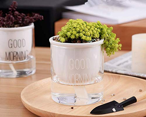 Self Watering Ceramic with Glass Planter, Tabletop Potted Ceramic Glass Combination Automatically absorbs Water Lazy Person Pot ... (White(Good Morning)) ()