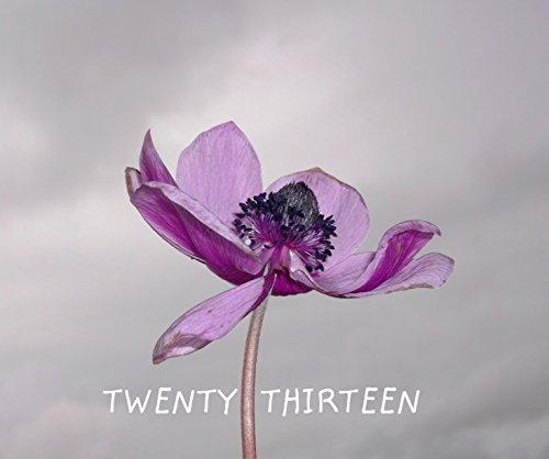 Twenty Thirteen PDF