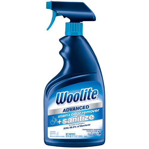 Woolite Advanced Stain & Odor Remover + Sanitize, 22floz