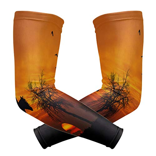 Arm Sleeve Horse And Sunset Sports Compression/UV Protection/Dry-Fast Breathable/Warmth for Men Women Cycling/Golf/Basketball 1 Pair]()
