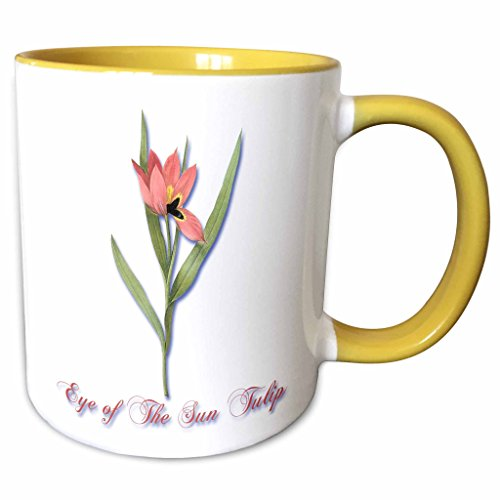 3dRose BLN Flowers and Fruits by Pierre Joseph Redoute - Eye of the Sun Tulip in Light Salmon Botanical Print - 15oz Two-Tone Yellow Mug ()