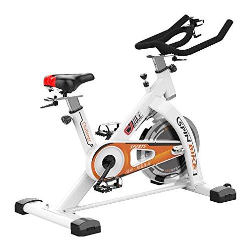 Homgrace Exercise Bike Indoor Cycle Bike, Indoor Bike Trainer (New Version S500 White) Homgrace