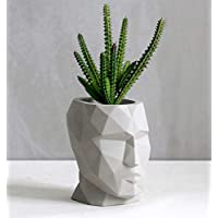 Cement Geometric Head Planter Plant Pot, Desk Storage, Succulent Planter Pot, Gift (Medium)