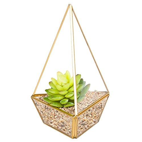 HOMEIDEAS Glod Geometric Terrarium Modern Clear Glass Pyramid Tabletop Box Succulent Plants Holder(Black)