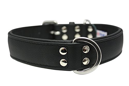 """Leather Dog Collar, Padded, Double Ply, 24"""" x 1.25"""", Black,"""