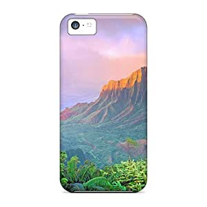 High Quality Lscape From Usa Case For Iphone 5c / Perfect Case