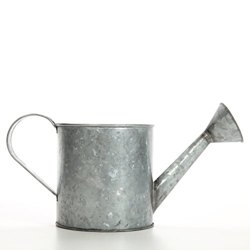 - Hosley 7 Inch High Galvanized Large Watering Can. Ideal Gift for Weddings Parties Craft DYI Spa Dried Flower Arrangements Outside Garden Planter O4