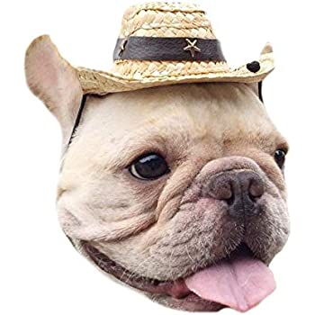 Pet Accessory Straw Cow boy hat with Pu Leather Star rivet for Dog or Cat  Use a33670c2d965