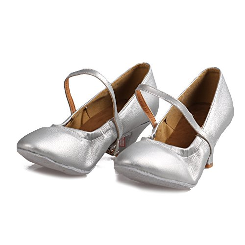 Roymall Womens Latin Dance Shoes Ballroom Dancing Performance Shoes Model 5003 Silver u6E31BIIHr