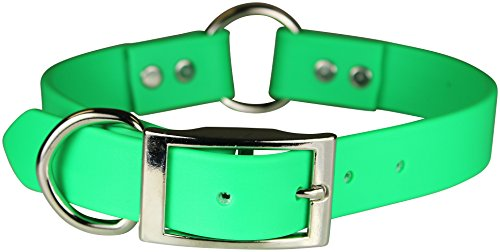 OmniPet Zeta Ring in Center with Dee Dog Collar, 1 x 26, Green