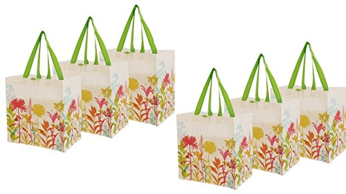 Earthwise Reusable Shopping Grocery Bag Tote w/Flowers Print (6 (Reusable Recyclable Tote Bag)