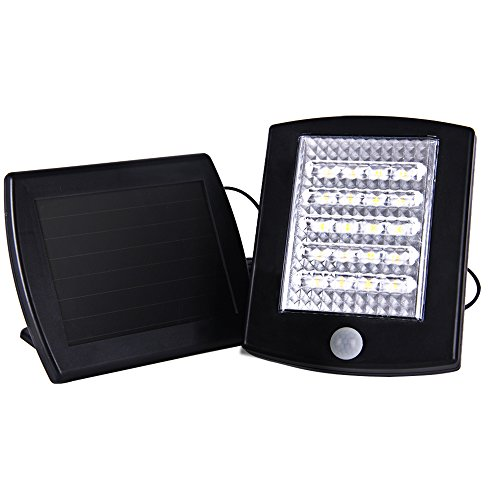 Led Up Lighting Rental - 3