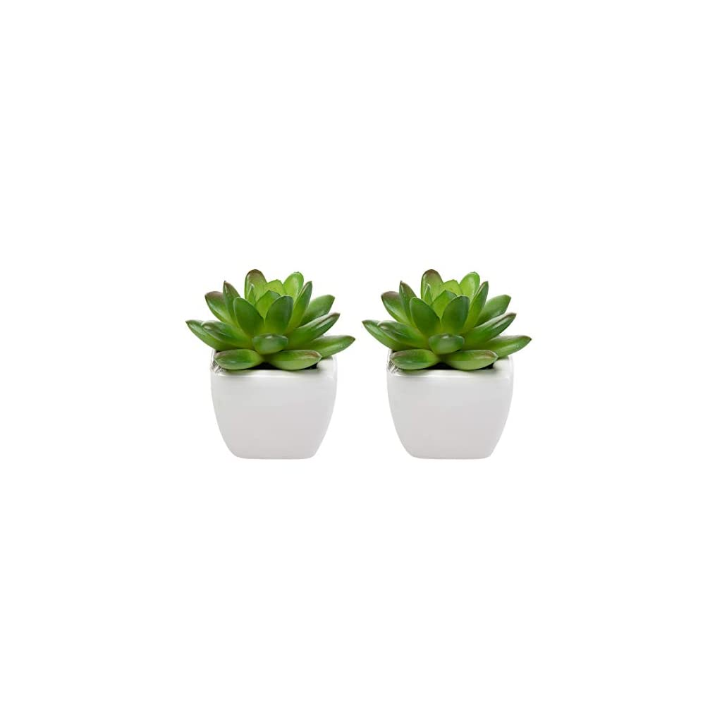 Set-Of-8-Small-Green-Succulent-Artificial-House-Plants-Ceramic-Pots-Home-Office