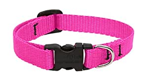 LupinePet 1/2-Inch Hot Pink 10-16-Inch Adjustable Dog Collar for Small Dogs