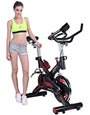 Pinty Fitness Stationary Spin Exercise Bike | Home Gym Light Indoor Cycling Spinning Bike with LCD Monitor & Phone Holder CVT Quiet Transmission Cardio Workout Equipment