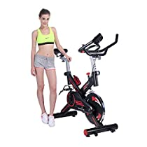 Pinty Stationary Spin Exercise Bike Indoor Workout Upright Gym Cycling with Screen for Health & Fitness Fully Adjustable, Max Weight: 330lbs