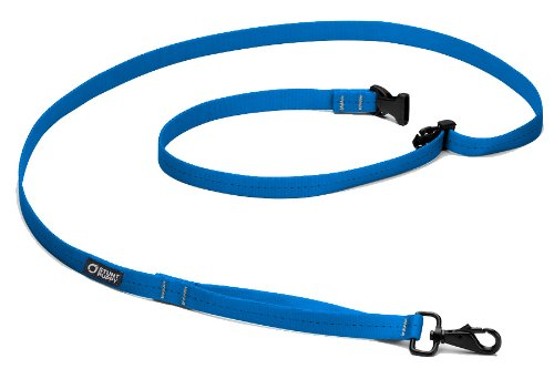 Stunt Puppy Everyday Leash Small