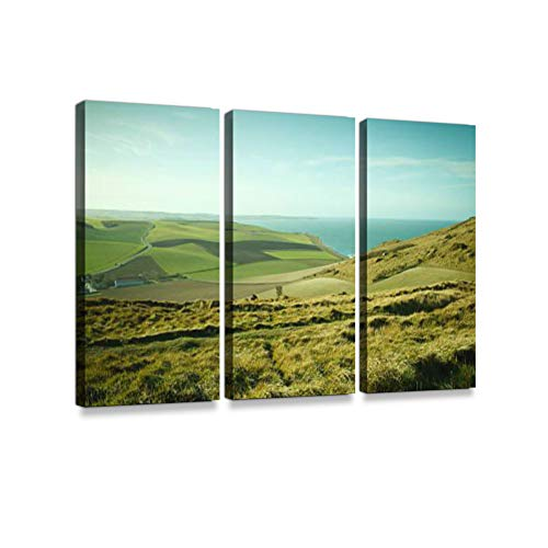 (Grassy Fields on Cliffs in Northern FrancePrint On Canvas Wall Artwork Modern Photography Home Decor Unique Pattern Stretched and Framed 3 Piece)