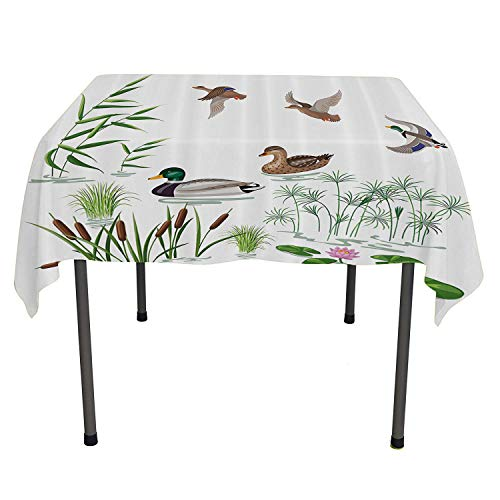 Duck, Wrinkle Free Anti-Fading Tablecloths Lake Animals and Plants with Lily Flowers Reeds and Cane in The Pond Nature Park Print, Dinning Tabletop Decoration, 50x50 Inch White Green
