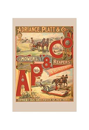 Adriance, Platt y Co., cortacésped, cosechadores y ...