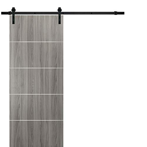 Barn Sliding Grey Door 42 x 96 with 8FT | Planum 0020 Ginger Ash | Sturdy Top Mount Track Set Steel Set | Closet Modern…