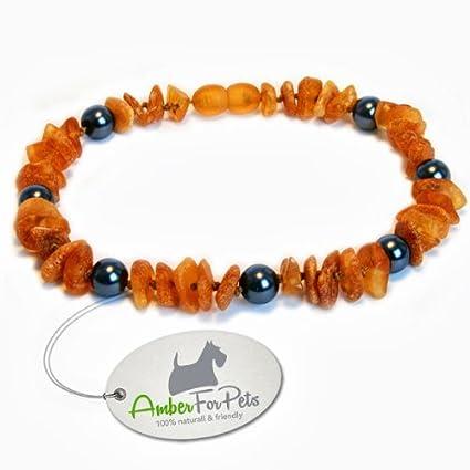 Bernstein Halsband für Hunde und Katzen Bernsteinkette Zeckenhalsband Zeckenschutz 20-60cm AmberForPets
