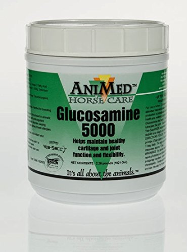 ANIMED 2.25 lb Glucosamine 5000 Equine Supplement Helps Maintain Healthy Cartilage and Joint Function and Flexibility