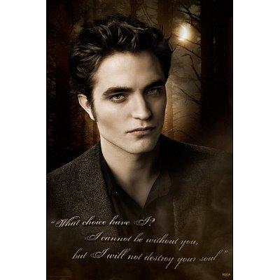 twilight saga cullen posters