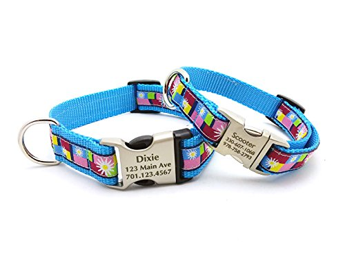 Daisy Blocks Blue Dog Collar with Laser Engraved Personalized Buckle (Daisy Block Collar)