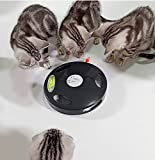PetDroid 2019 Interactive Robotic Cat Toy,Hanging Electric Concealed Motion Cat Mouse Tail Toy,2nd Generation (Black)