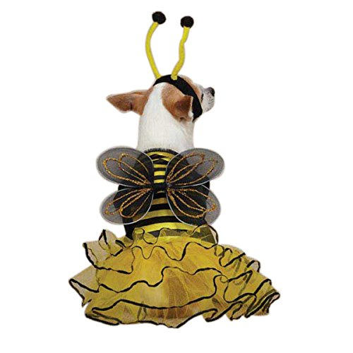 Casual Canine Bee Mine Dog Costume, X-Small, Yellow]()